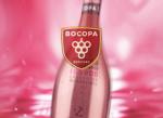Bocopa Rosado - Sparkling Pink Rose